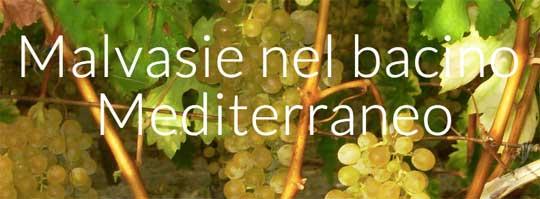 Tecnovino eventos vitivinicolas Malvasie