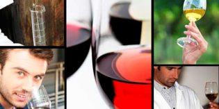 Programa de becas de investigación vitivinícola de la OIV para 2018