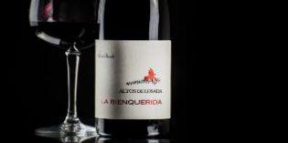 Descubre La Bienquerida, del que dicen que es el vino más codiciado de El Bierzo