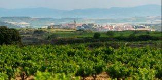 Nace Las Pisadas 2015, el primer vino de la Familia Torres en Rioja Alavesa