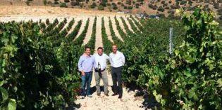 Viticultura biodinámica y sostenibilidad marcan el 20 aniversario de Quinta Sardonia