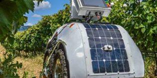 Un robot ofrece más de 3.000 datos/hora del estado del viñedo: el proyecto Vinescout
