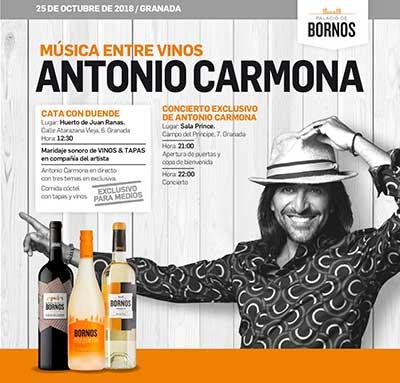 Tecnovino eventos y ferias vitivinicolas Musica entre vinos Bornos