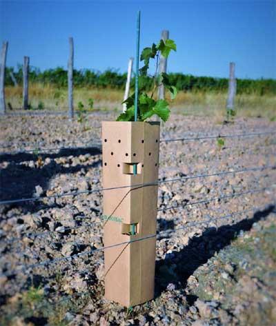 Tecnovino tubos protectores para vina Bisodisac 2