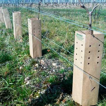Tecnovino tubos protectores para vina Bisodisac 3