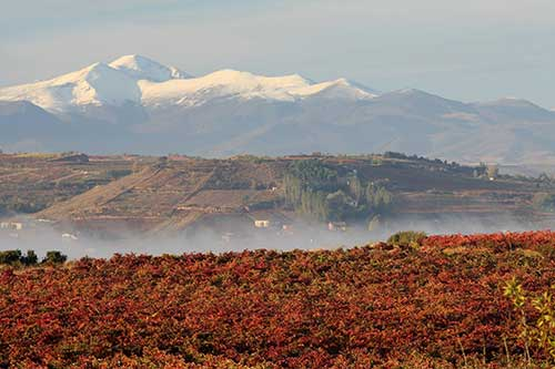Tecnovino Congreso Internacional de Enoturismo 2019 IWINETC Rioja Alavesa