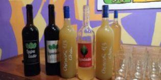 Una campaña de crowfunding lanza al mercado Lupulado: el primer vino con lúpulo