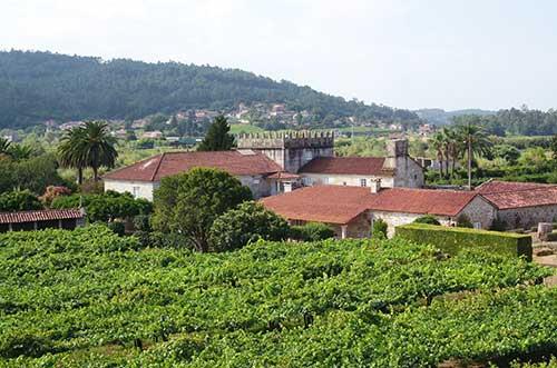 Tecnovino vino de granito Familia Torres Pazo Torre Penelas 3