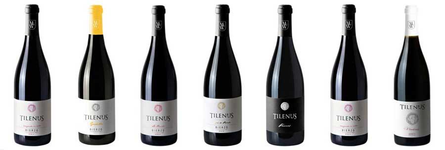 Tecnovino vinos de MGWines Bierzo