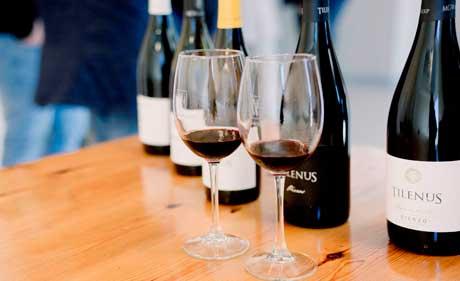 Tecnovino vinos de MGWines botellas y copas