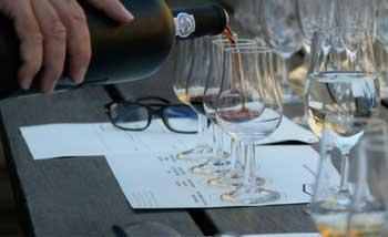 Tecnovino formacion en vinos Universidad de La Laguna 1