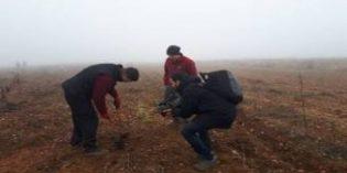 """La poda rastrera de Dominio Dostares llega al programa de TVE """"Aquí la Tierra"""""""