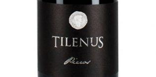 Tilenus Pieros, un vino delicado y con carácter que refleja el esplendor del Bierzo