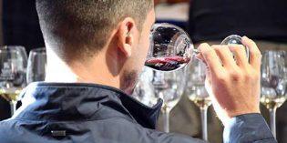 Quinto curso de análisis sensorial de vinos de la Universidad de La Laguna