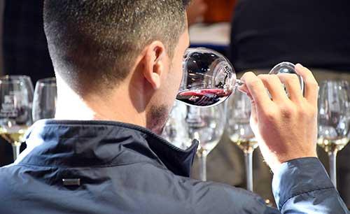 Tecnovino curso de analisis sensorial de vinos Universidad de La Laguna