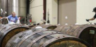 Finaliza el proyecto IR-WINE para mejora del control microbiológico al elaborar vino y cava