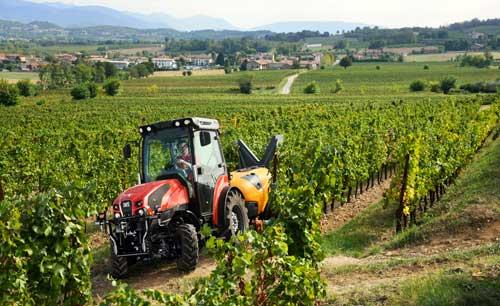 Tecnovino tractor de Same para vinedo Frutteto CVT 05