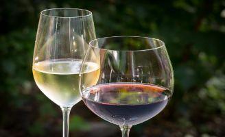 Tecnovino vino tinto