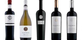 Los vinos de Clunia, en la exclusiva muestra TopWineSpain de Enofusión y Madrid Fusión
