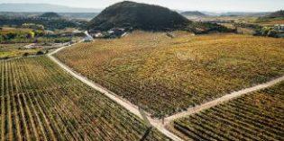 Stairway to heaven gana el concurso Concéntrico 05 y mostrará una nueva visión de Viña Lanciano