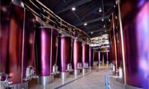 Defranceschi SACMI, el futuro de la vinificación
