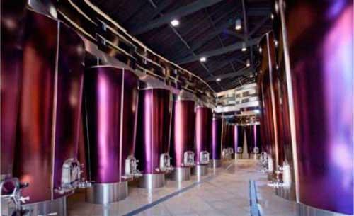 Tecnovino Defranceschi SACMI futuro de la vinificacion detalle