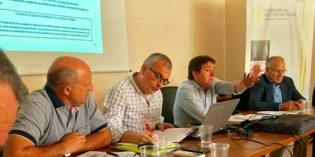 Cooperativas Agro-alimentarias propondrá una medida que permita corregir las oscilaciones de precio del mercado vinícola