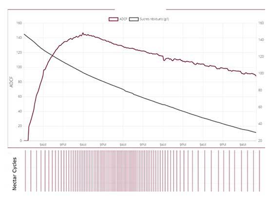 Tecnovino fermentador automatico WebNectarPlus Parsec grafico