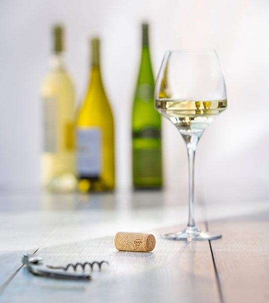Tecnovino cierres de vino Diam