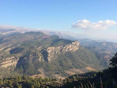 Tecnovino tendencias del mundo del vino ProWein Montsant