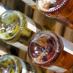 Viñedos en altura, residuo cero, variedades que vienen, mezclas de campo, vinos en lata… tendencias del mundo del vino en ProWein