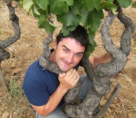 Tecnovino Jornada de Viticultura Julian Palacios