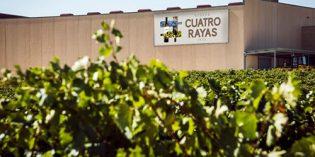 Cuatro Rayas, un caso de éxito de transformación digital en bodegas