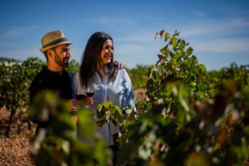 Tecnovino Ruta del Vino de Valdepenas