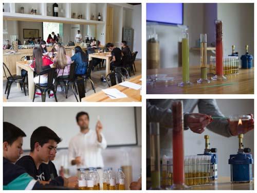 Tecnovino taller de enologia para jovenes Abadia Retuerta