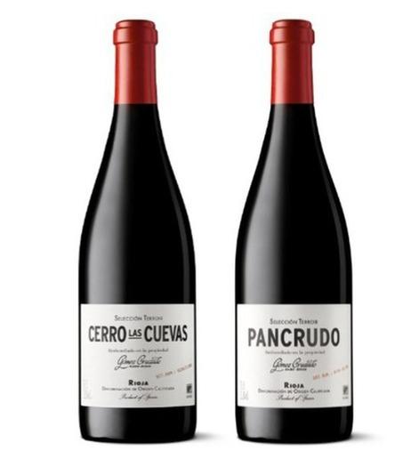 Tecnovino Cerro Las Cuevas y Pancrudo