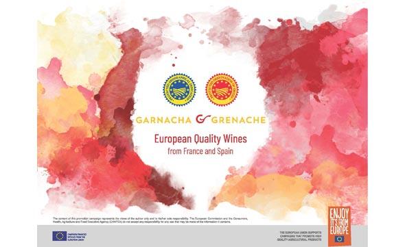 Tecnovino proyecto Garnacha Asia