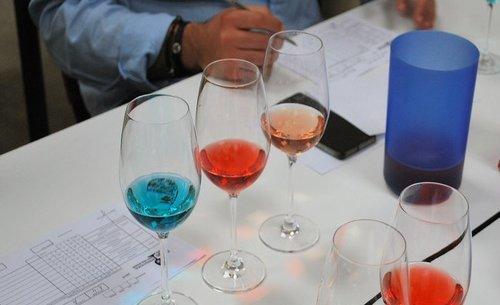 Tecnovino ConVino 2019 vinos