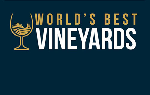 Tecnovino mejores viñedos del mundo