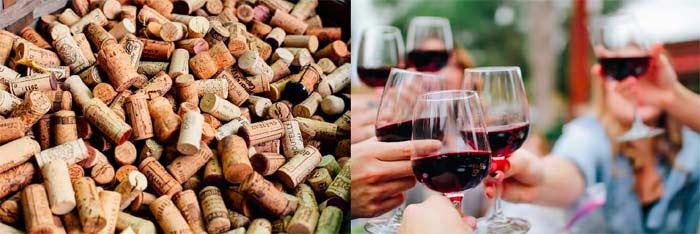 Tecnovino libro El gusto por la nariz sobre cocina y vino