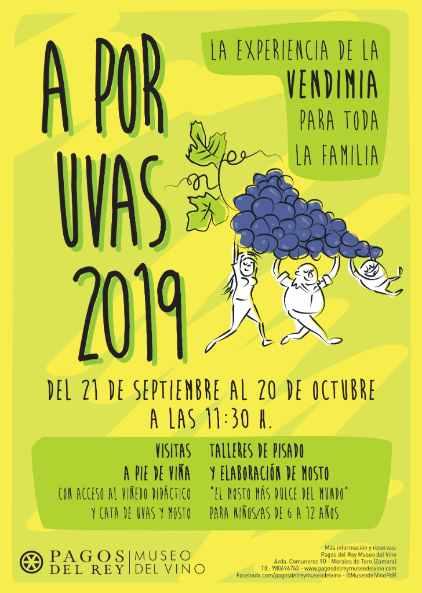 Tecnovino A por Uvas 2019