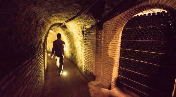 Tecnovino Ruta del Vino Rueda
