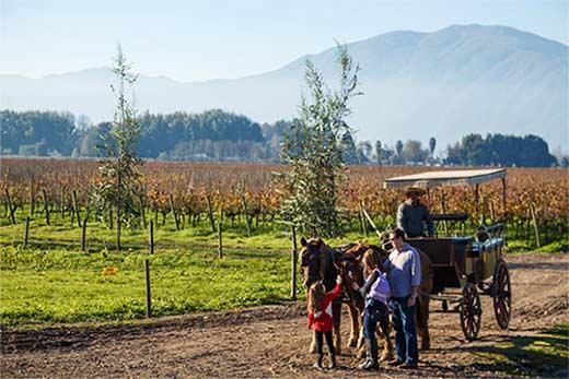 Tecnovino Turismo Enologico Chile