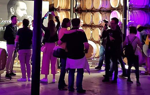 Tecnovino Wine Tourism School detalle