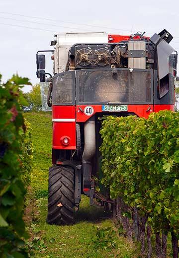 Tecnovino expedientes sancionadores a empresas vinicolas Union de Uniones