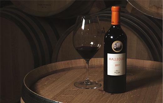 Tecnovino vino Malleolus 2017 Bodegas Emilio Moro detalle