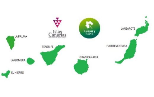 Tecnovino Canary Wine Academy