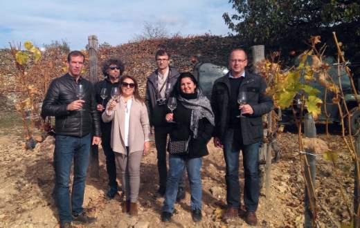 Tecnovino Wine&Sense