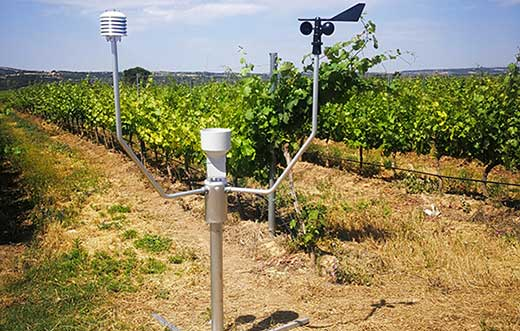 Tecnovino estacion meteorologica agricola Meteus de Isagri detalle