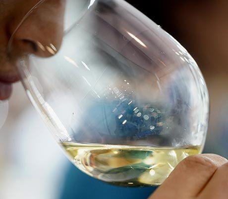 Tecnovino feria Gastronoma 2019 vino blanco